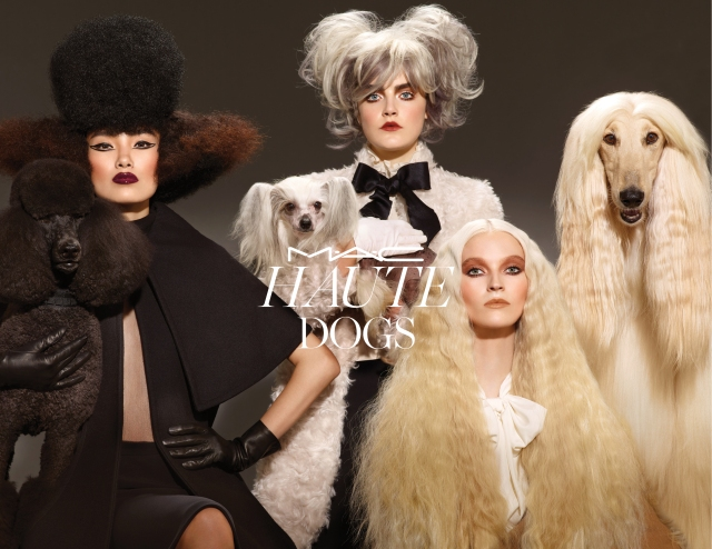 haute dogs visual mac